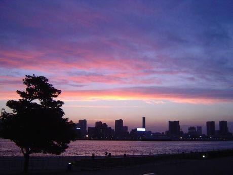 都立潮風公園 バーベキュー場から見える東京湾