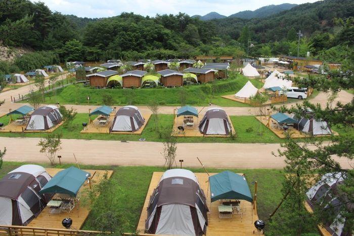 テントが張られたキャンプ場