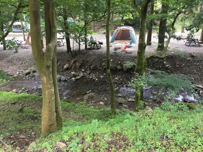 ボスコキャンプベース内を流れる小川