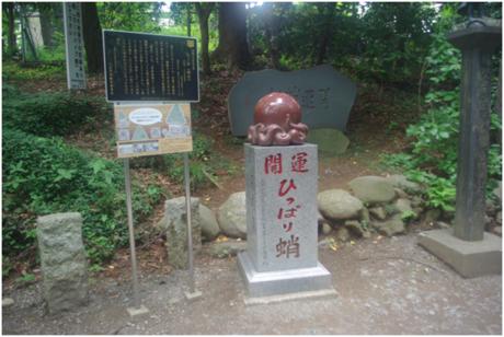 高尾山の表参道コースにある開運ひっぱり蛸
