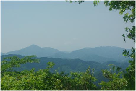 高尾山から見える富士山