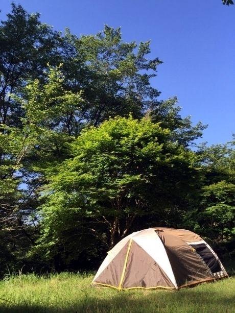 キャンプ場に立つドームテント