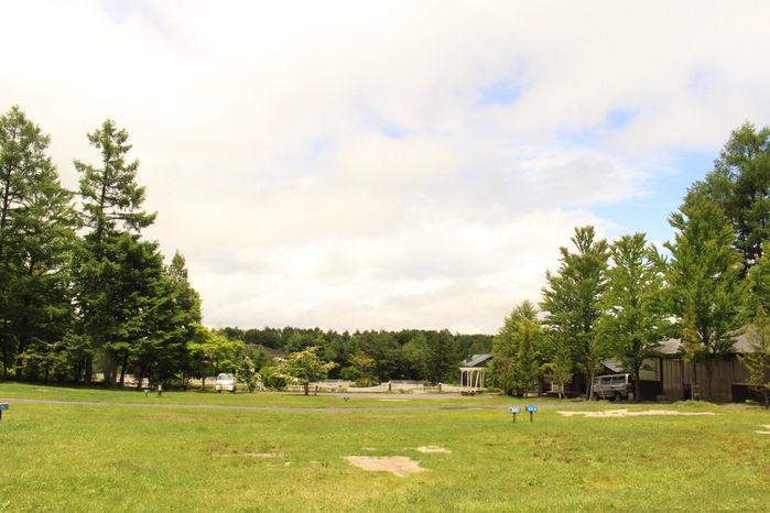 北軽井沢スウィートグラスの自然あふれるキャンプ場