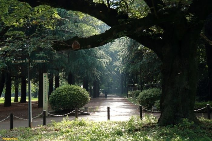 小金井公園内の様子