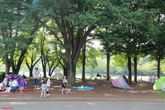 木陰でテントを立てて遊ぶ親子