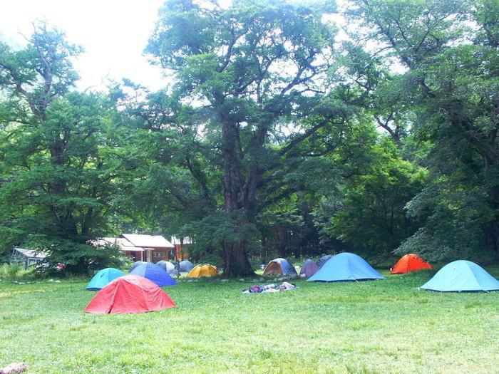 フリーサイトに張られたテント