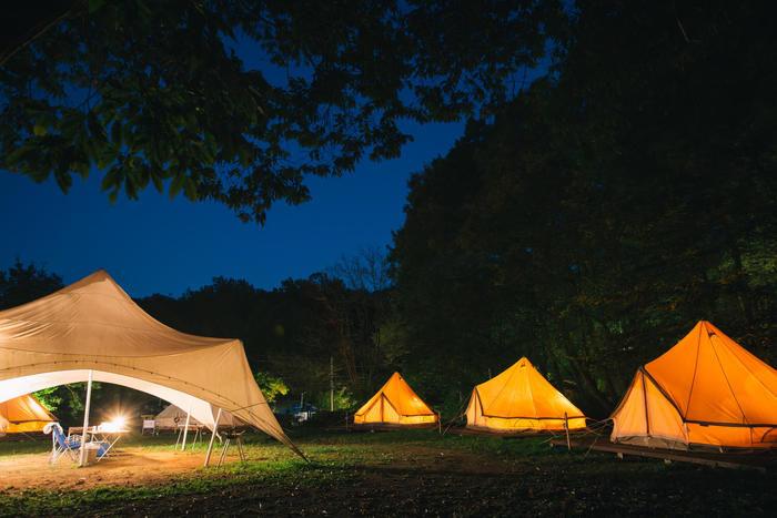 夜のキャンプ場の様子