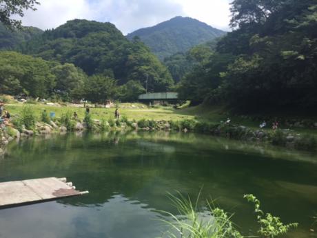 ウェルキャンプ西丹沢の池