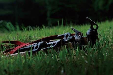 芝生に寝かして置かれたペグ