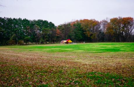 1万坪を誇る那須たんぽぽ村キャンプ広場の広大なフリーサイト