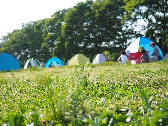 様々なテントが並ぶキャンプ場