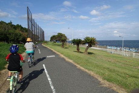 水平線の景色を横に心地よい潮風を感じられる若洲公園キャンプ場のサイクリングロード