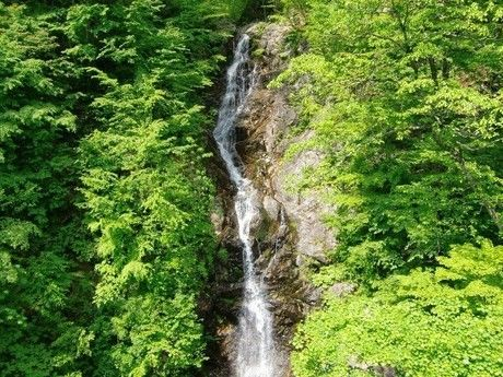 東京都檜腹都民の森の滝
