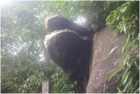 筑波山のガマ石