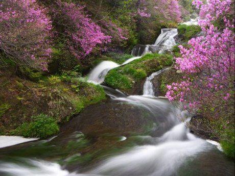 竜頭ノ滝の滝が流れる様子