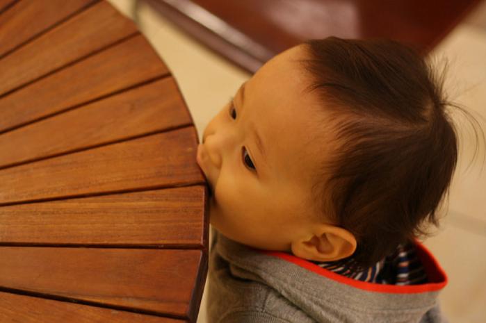 木のテーブルをかじる子供