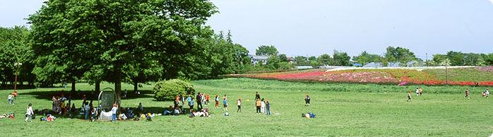 小金井公園の多目的運動広場