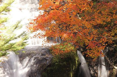 (関東/栃木県)竜頭ノ滝の紅葉