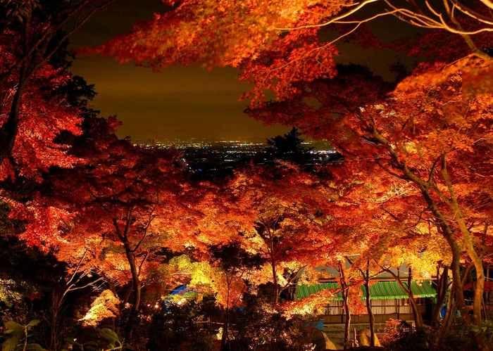 ライトアップされた茨城県、筑波山の紅葉