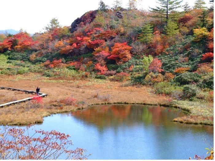 群馬県、白根山の紅葉