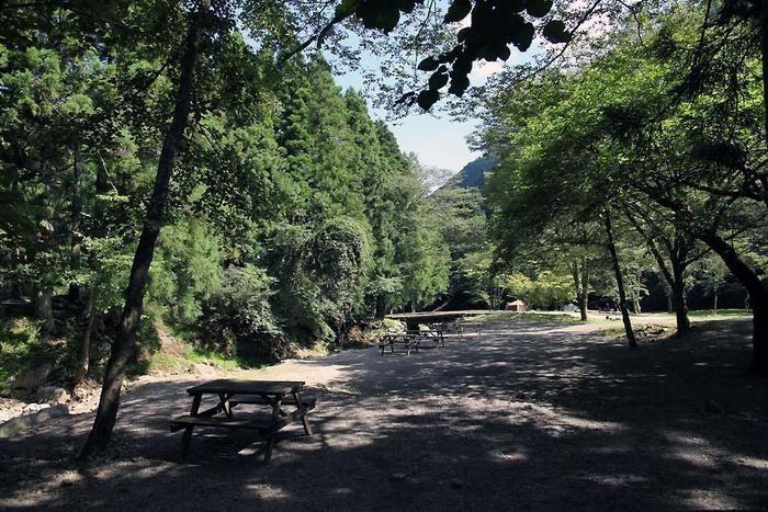 bosco auto camp baseのキャンプサイト