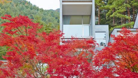 星のや富士の紅葉とキャビン