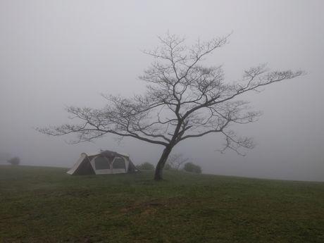 雲の中のテントの様子