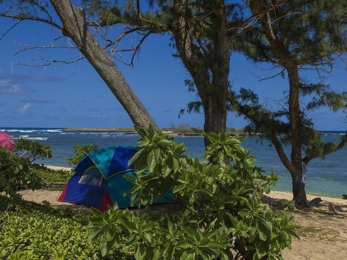 ビーチの木陰にたてられたテント