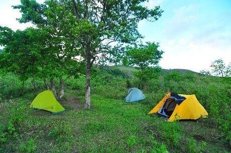 林間に張られたてテント