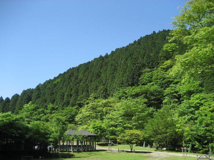 【神奈川県秦野市】BOSCO Auto Camp Base