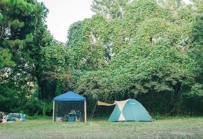 パディントンベアキャンプグラウンドに設置されたテント