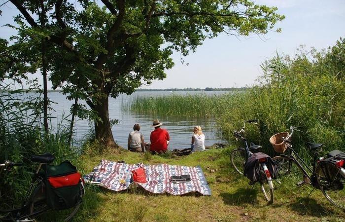 川沿いでのピクニック
