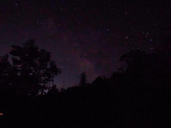 FLORAキャンプサイトで見れる星空