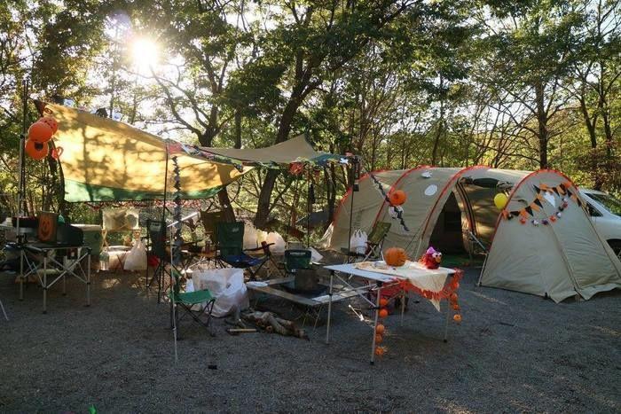 ACN赤城山オートキャンプ場のキャンプサイト
