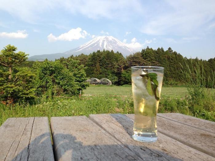 富士ヶ嶺・おいしいキャンプ場で飲むモヒート