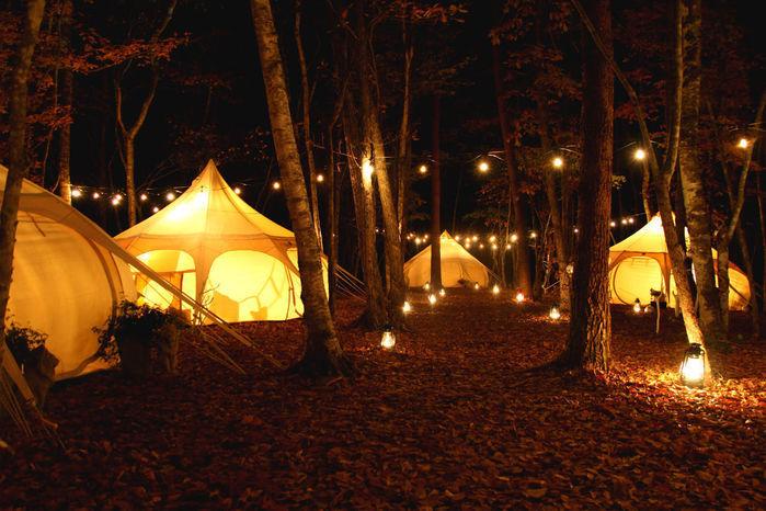 森の中に並ぶグランピングテント