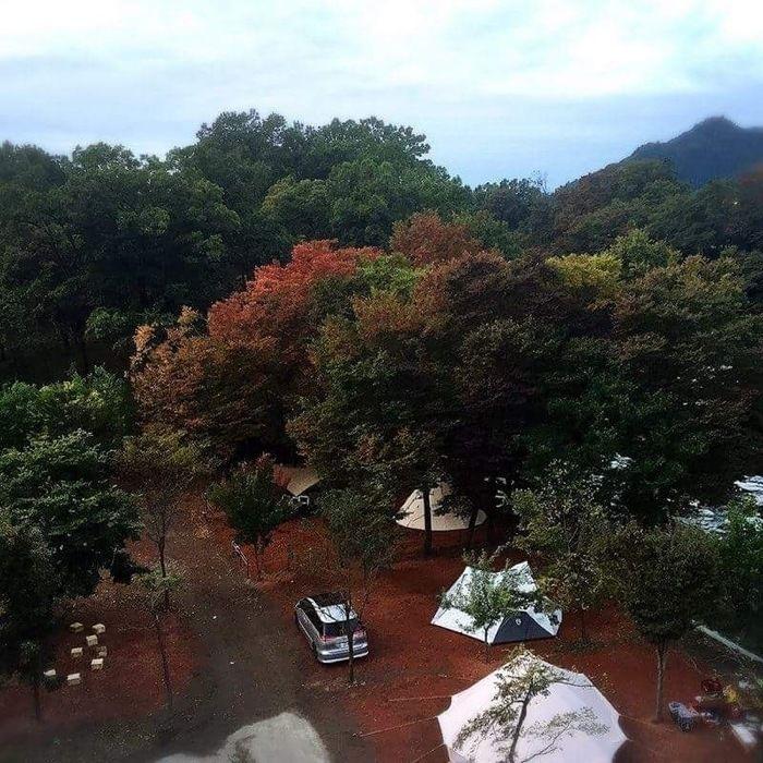 長瀞オートキャンプ場のキャンプサイトの様子