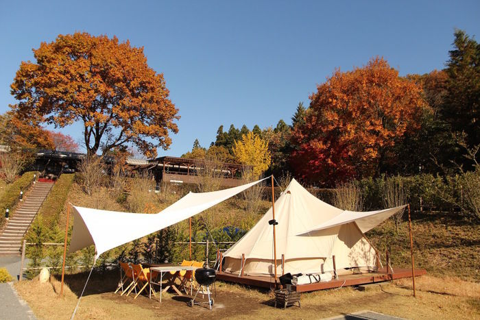 紅葉している木の下に張られたテント