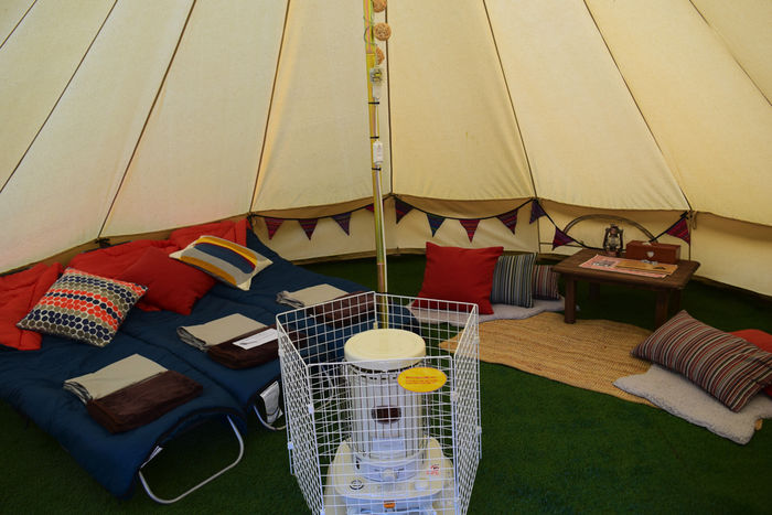 人工芝が敷かれたテント内