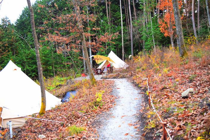 テントへと続く細い道