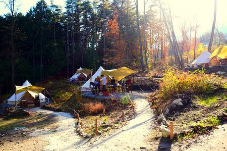 【取材レポ】良いとこ取りでキャンプを楽しむ!フローラキャンプサイトの魅力を徹底紹介!