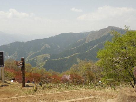 生藤山の頂上