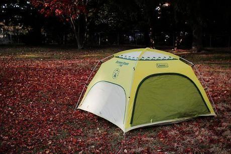 落ち葉の上に張られたテント