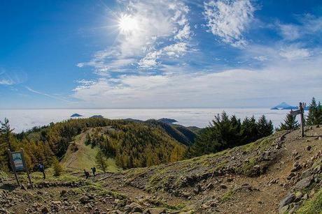 山頂から見た景色