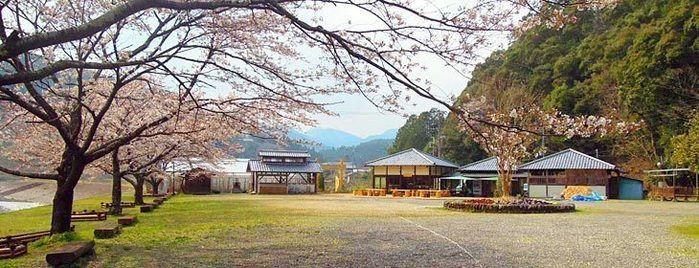 渡瀬緑の広場キャンプ場のキャンプサイト