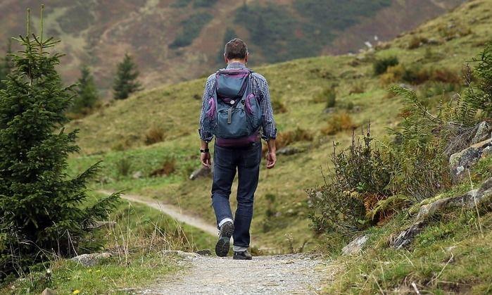 ハイキングをしている男性の後ろ姿