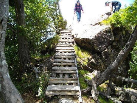 大台ケ原の木でできた階段を登りきた女性と男性
