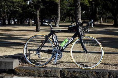 公園に停められた自転車