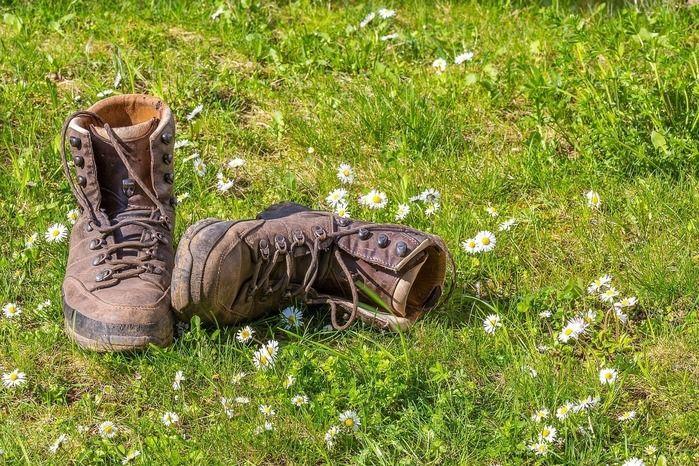 登山靴と芝生とたくさんのヒメジョオン