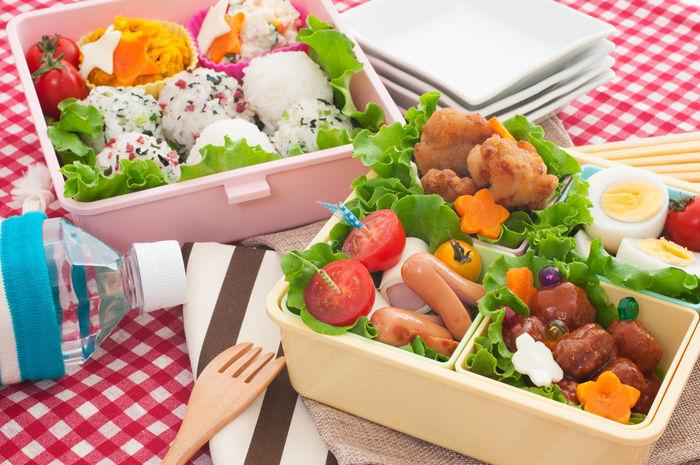ピクニック用のカラフルなお弁当